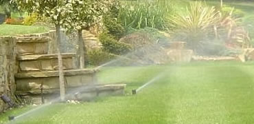 Residential Irrigation in Guildford